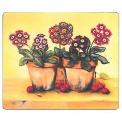 Lady Clare Auriculas Coasters