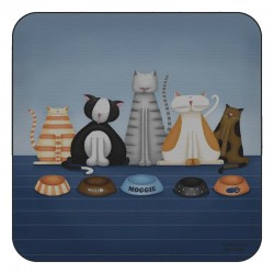 Plymouth Pottery Hungry Cats Coasters