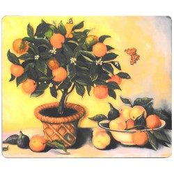 Lady Clare Orange Tree Coasters