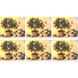 Lady Clare Orange Tree Coaster set of 6
