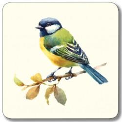 Garden Birds Mixed Square coasters - Blue Tit