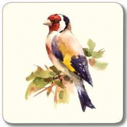 Goldfinch from Garden Birds Mixed Square drinks coasters