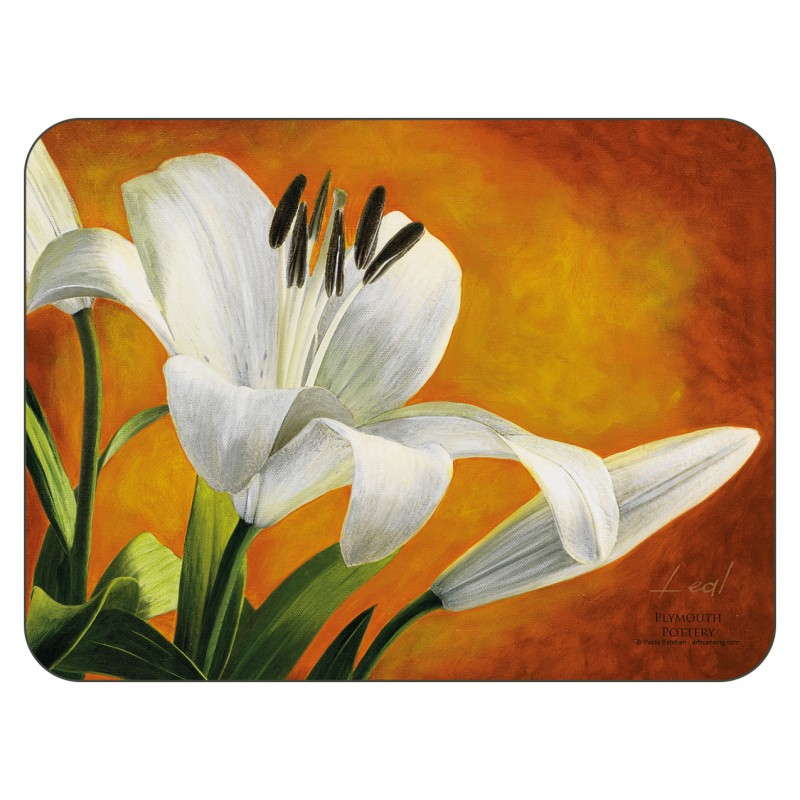 Plymouth Pottery Lily Sunburst floral corkbacked Placemats